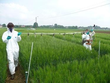 Recrutement Responsable des Essais Agronomiques